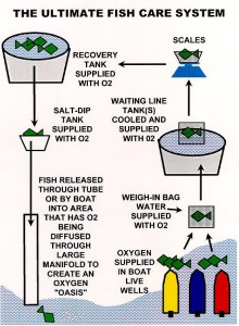 Gilliand's Ultimate Fish Care System